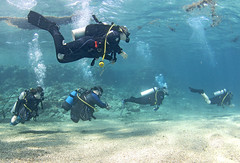 03.11 16 (KnyazevDA) Tags: diver disability undersea padi paraplegia amputee underwater disabled handicapped owd aowd scuba