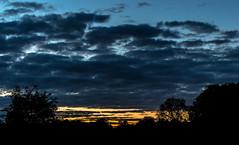 Stadtpark Hamburg sundown (prose86) Tags: blue tree nature clouds dark landscape hamburg hour stadtpark