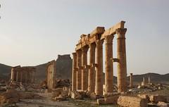 En primer término,parte de la Gran Columnata,a continuación el conocido como templo de los muertos y al fondo,en la colina,el Castillo árabe ó Qalaat Ibn Maan. (melamasso) Tags: palmira templo siria columnas