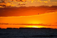 Sunrise(After Supermoon) (skram1v) Tags: sunrise dawn eagle surveillance lakewinnipeg postsupermoon sept2815