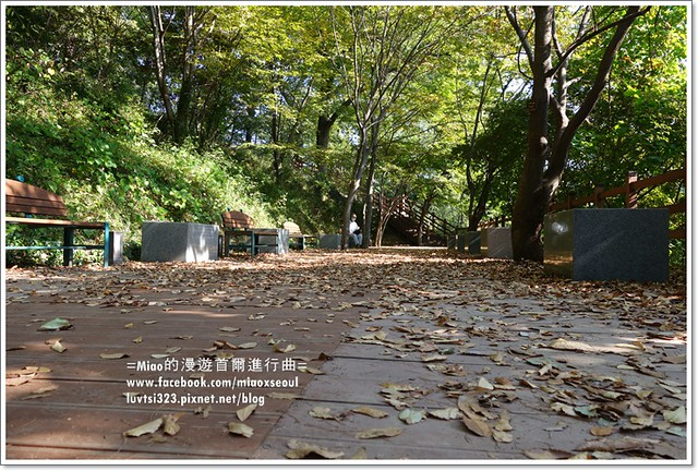 양림동근대역사문화마을28