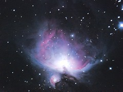 Orion M42 GSO250F4Test (plant.nerd) Tags: purple nebula astrophotography orion m42 f40 gso 250mm astrograph eq6 neq6 newtontian