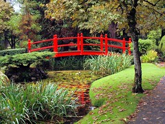 Japanese Red bridge 060 (saxonfenken) Tags: day2irelandathlone irishnationalstud ireland kilarney red bridge autumn fall thechallengefactory 6918bridge 6918 friendlychallenges pregamewinner challengeyou gamewinner perpetual
