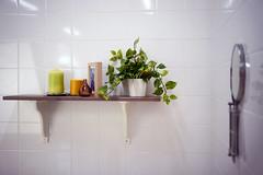 DSC00210c1 (haru__q) Tags: plant candle sony voigtlander foliage a7 colorskopar キャンドル 観葉植物