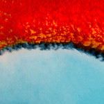 Red Blue Divide