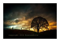 Five Go Mad.... (RonnieLMills) Tags: county ireland sky tree monument silhouette nikon moody ring lone giants northern tamron prehistoric happynewyear neolithic enclosure dolmen shawsbridge henge antrim 1024 d90 ballynahatty 2700bc fivegomad