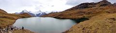 141008152244 () Tags: switzerland first grindelwald interlaken jungfrau  2014 siwss 10 bachalpsee   firstflyer   trottibikeride