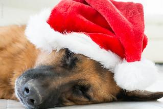 A Tired Santa