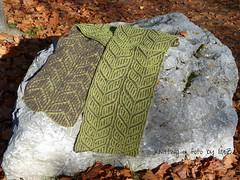 Double Line Chevron by Nancy Marchant (esli24) Tags: knitting brioche stricken nancymarchant patentmuster esli24 ilsez patentstricken
