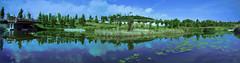Panormica de El Parque de la Marjal (Ivn.Gnell) Tags: panormica parque marjal alicante naturaleza provincia espaa paisaje agua nubes reflejos arquitectura rboles exterior mvil telfono one oneplus edificio