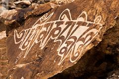 IMG_2215 (Archna Singh Photography and Design Studio) Tags: canon ladakh zanskar jammukashmir khardungla rohtang tsokar india nature tropicaldesert buddhism