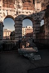 Rome 2016 (cinotosi) Tags: rome rom vatican collosseum vatikan papst pope church stpeter petersplatz circusmaximus museivaticani