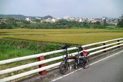 P vs  (nk@flickr) Tags: taiwan hsinchu 20161105 cycling   guanxi   canonefm22mmf2stm