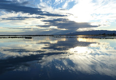 Desprs de la tempesta (cincde82012) Tags: ebre ebro delta river riu montsia catalonia reflex reflection