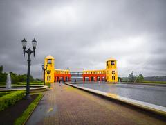 Chuva no Parque Tanguá (Eduardo PA) Tags: curitiba paraná nokia pureview microsoft windows phone 950xl lumia wp chuva no parque tanguá