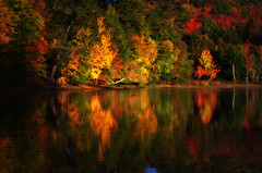 Dawn and her morning light (Captions by Nica... (Fieger Photography)) Tags: reflections reflection water landscape lake leaves branches bright forest fall foliage autumn nature outdoor serene quebec canada