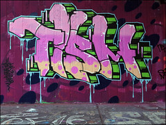 Tism (Alex Ellison) Tags: ctr cityrollers mh mhb northlondon urban graffiti graff boobs halloffame hof