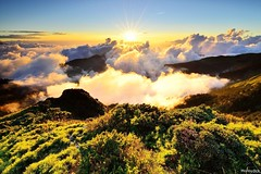 @_hehuanshan _Taiwan (monbydick) Tags: exposure hehuanshan monbydick national nikon park scenery landscape sky taiwan taroko                peaceful  sunset a012 tamron1530mmf28 seaofclouds