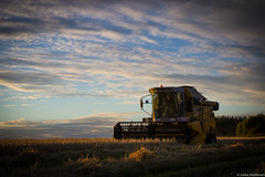 IMG_3996 (Jukka Heikkinen) Tags: harvest barley combineharvester sampo 2065