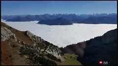 Must See This Place in Switzerland...🇨🇭(Mount Pilatus in Luzern) (Shobana Shanthakumar) Tags: luzern pilatusmountain pilatuskulm mountain alpsmountain swissmountains swisstravel swissbeauty swissrailway swisswhether swissnature swisstrain swisskanton swissgemeinde switzerland schweiz suisse naturebackground nature beautiful google europe berg swissberg