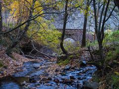 Haz-viento (Jesus_l) Tags: europa espaa len nocedodecuruea rovaldorria cascadadevaldorria puente jessl