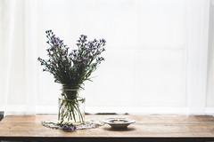 (CarolienCadoni..) Tags: sonyslta99 sal85f14z 85mm sony still stilllife window light naturallight flowers