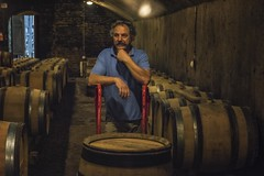 a guardian of the barrels (charlesgyoung) Tags: cotedebeaune burgundy charlesyoung nikonfx nikon d810 travelphotography vikingrivercruise wine winecellar barrels france