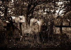 I Kept Hoping for a Letter (Katrina Wright) Tags: dsc3992 mailboxes mail letterboxes neglected rusty abandoned broken nostalgia sepia weeds overgrown mono bw lummiisland wa