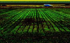 P3920254_edited-1 landscape (gpaolini50) Tags: emotive esplora explored explore emozioni explora landscape photoaday photography photographis photographic photo phothograpia photoday paesaggio