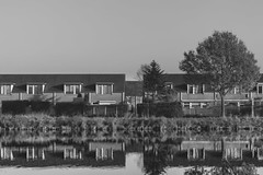 (jsmits447) Tags: netherlands brabant helmond brouwhuis amateur d3200 50mm f18g afs nikon prime autumn urban canal water reflection reflections bw blackandwhite outdoor outdoors outside clearsky dslr