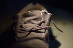 """Old Brown Shoe"" HMM (Sizun Eye) Tags: thebeatles hmm macromondays macro sigma105mmf28macro nikond750 beatlesbeetles song title music shoe oldbrownshoe"