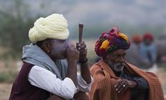 Chillam Life... (bhavit.godiwala) Tags: pushkar pushkar2016 rajasthan camelfair camels ngc nik nikon twop colors
