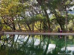 Reflexes de tardor (Foleta) Tags: 2016 barcelona horta laberint parc reflexes tardor