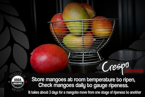 "Store Mangoes at Room Temp • <a style=""font-size:0.8em;"" href=""http://www.flickr.com/photos/139081453@N03/31324763076/"" target=""_blank"">View on Flickr</a>"