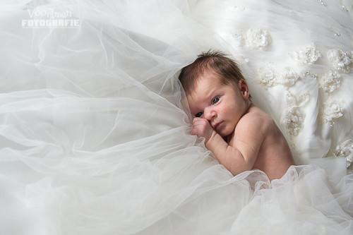 newbornFleur-6364-3