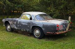 Circa 1962/63 Maserati 3500 GTI (vetaturfumare - thanks for 3 MILLION views!!!) Tags: trees ny rust lawn longisland springs stump primer junkyard gt gti wreck rost maserati granturismo trident schrott 3500 wrack easthampton skrotbil barnfind rückleuchte baklykta rosthög