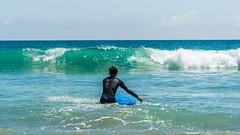 DSC_4206 (sergeysemendyaev) Tags: zoomabeach beach ocean malibu serfing losangeles la california summer пляж океан малибу серфинг ла лосанджелес калифорния nikon