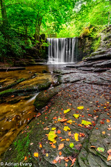 Autumn Leaves (Adrian Evans Photography) Tags: autumn summer tree nature water leaves stone wales forest river landscape waterfall nikon waves outdoor scenic landmark filter lee 20mm weir d800 waterscape wrexham northwales ndfilter coedpoeth nantmill riverclywedog plaspowerwood clywedogvalley littlestopper