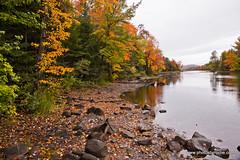 Piseco Lake outlet (doveoggi) Tags: autumn trees newyork color fall leaves reflections rocks stream adirondacks foliage 0228 piseco