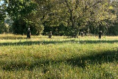P104 | 4 (deanna.f) Tags: fall farm orchard fujifilm x100t