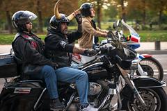 Motards en colère (dprezat) Tags: paris nikon contest protest harley harleydavidson bikers manifestation d800 motards motardsencolère nikond800