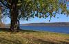 Lake Pepin (bkays1381) Tags: lake water fallcolors höst pepin sjö lakepepin