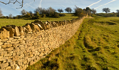 THE WALL (chris .p) Tags: uk autumn trees england grass wall nikon october view path walk broadway scene cotswolds gb worcestershire cotswold 2015 d610