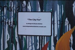 CITY FOX BY BRIDGET NI DHUINN BELCHER [BOLTON STREET]-110286