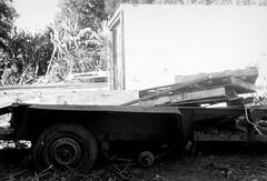 100_9262 2 (Rhinoface2) Tags: wood blackandwhite bw monochrome digital junk louisiana blackandwhitephotos kodakm5370