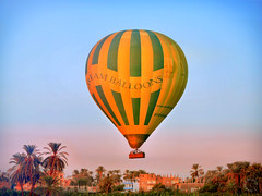 Yellow and Green Hot Air Balloon and Sunrise over Luxor (Travel to Eat) Tags: balloons dawn morninglight earlymorning egypt luxor hotairballoons nileriver lushgreenfields
