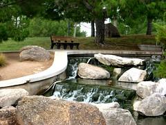A MEMORY BENCH IN FREESTONE PARK (Visual Images1) Tags: trees arizona bench ducks waterfalls gilbert monday hbm freestonepark picmonkey