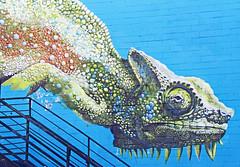Creature (Ellsasha) Tags: mural streetart art artist streetartist muralist urbanart houston texas anatronan festivals colors colours creativity artistry creator