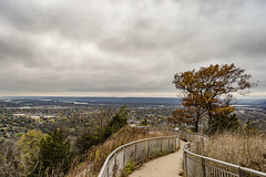 Black Cat Crossing My Path #badluck (2 of 2) (brian_barney9021) Tags: granddads bluff lacrosse la crosse wi wisconsin landscape photography clouds cloudy nikon d7200 kit lens sky trees grass hills bluffs path city scape cityscape town local
