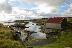 8 pm (Daniele Sartori) Tags: haugesund norvegia norway europa europe north nord nikon d600 viaggio travel trio cielo sky mare sea seagull gabbiano capanna capanno hut sole sun riflesso reflection nuvola cloud boat barca